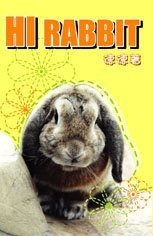 《Hi Rabbit》