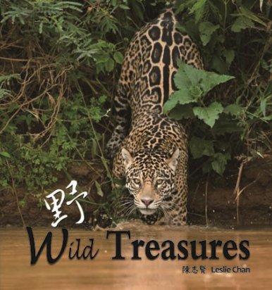 《野 Wild Treasure》