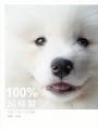 100%純棉製